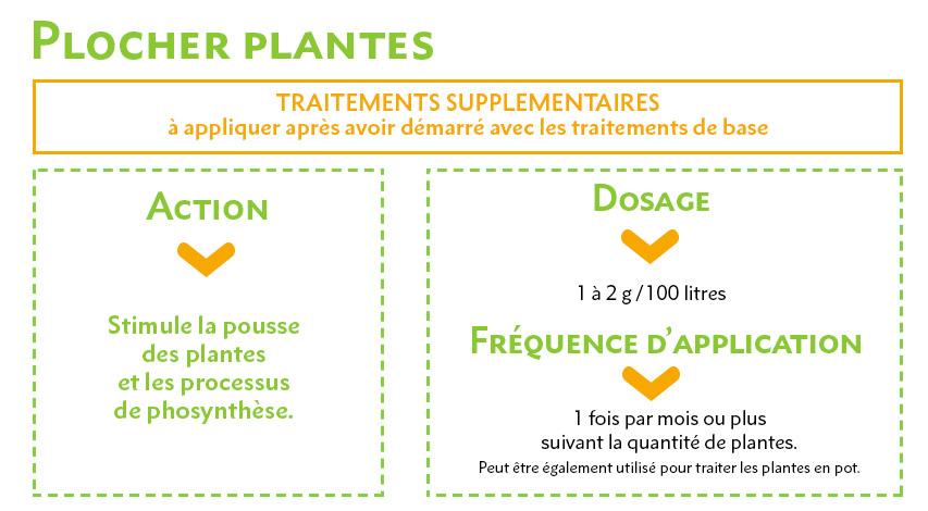 Plocher Plantes